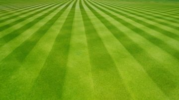 Lawn Striping Tips - How To Mow Stripes In Your Lawn