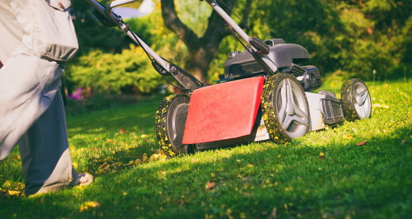 When To Stop Mowing, And Watering, In The Fall