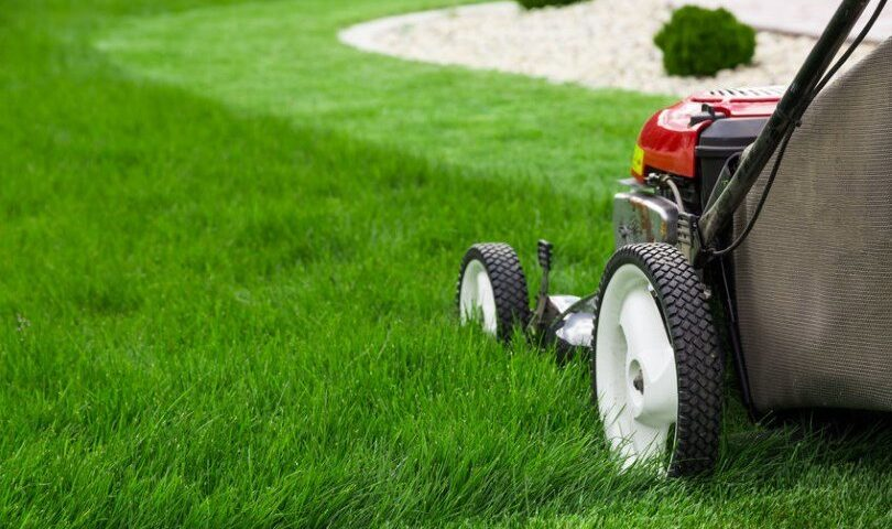 Lawn Care and Grass Tips in Connecticut